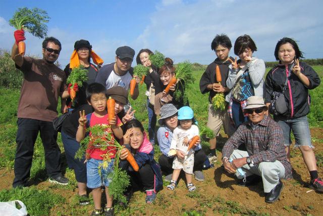 【沖縄・うるま市・農業体験】キャロットアイランド・津堅島でにんじん収穫&沖縄料理づくり