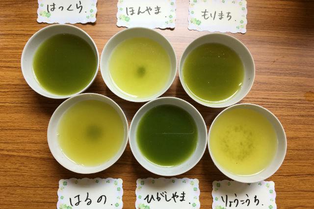 【静岡市・料理体験】旨みたっぷり!隠れ家カフェで新茶の飲み比べ(抹茶スイーツ・お土産茶付き)