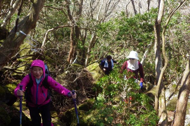 【静岡・伊豆・トレッキング】ジオサイトが一望できる山頂付近へ!のんびり歩く「げんこつ山」
