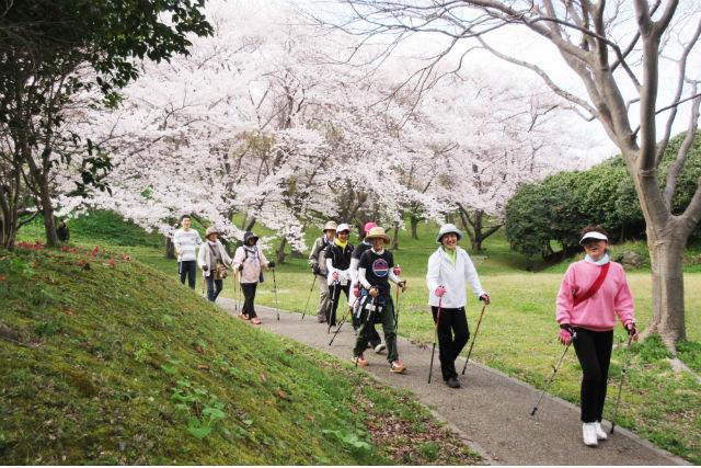 【石川・能登・トレッキング】木ノ浦の美しい自然を満喫!ノルディックウォーキング