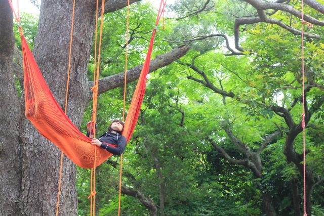 【石垣島・木登り】木の上で過ごす、のんびり時間。Tree on Cafe