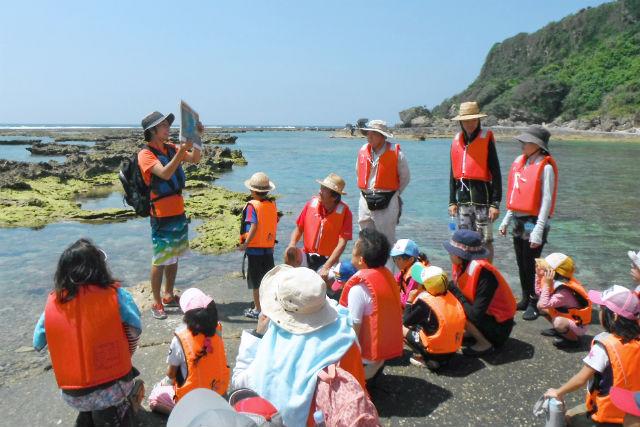 【沖縄・南部・エコツアー】サンゴ礁が作り出した「イノー」で、海の生き物とふれあおう!