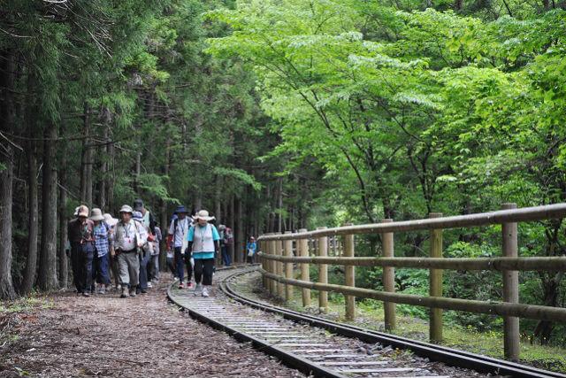 【静岡市・ガイドツアー】井川の見どころをぐるっと回ろう!井川めぐりツアー