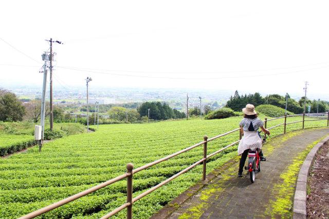 【岐阜・レンタサイクル】スポーツタイプ・レンタサイクル(養老線「揖斐駅」集合)