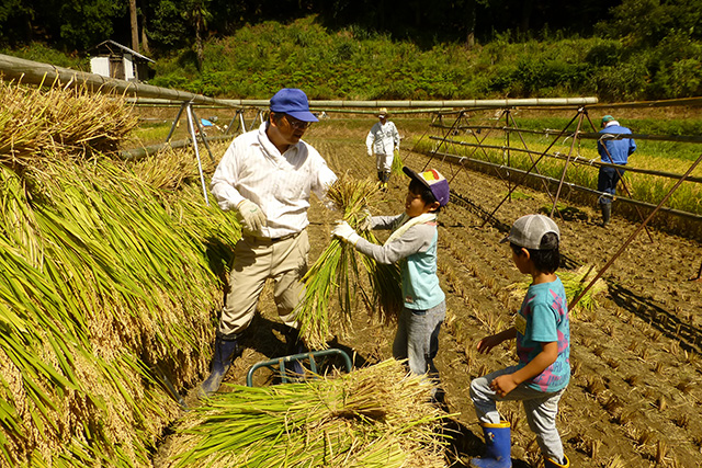 かまど炊き体験 無農薬米と蓮ヶ峯農場の絶品たまごで食す卵かけごはん