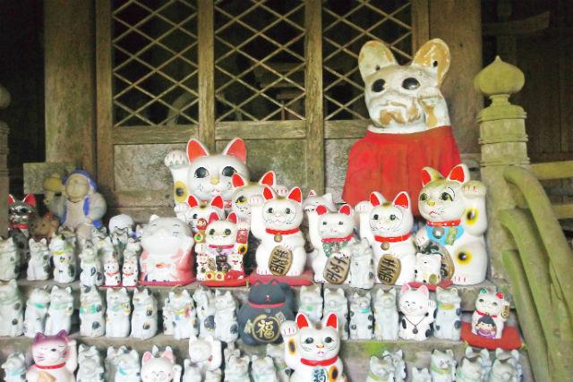福招きウォーキング 500体の招き猫と赤岩修験道