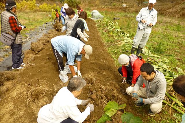 水源の里・市志で「稲木干し米を作ろう」(収穫祭・ 野菜収穫体験)