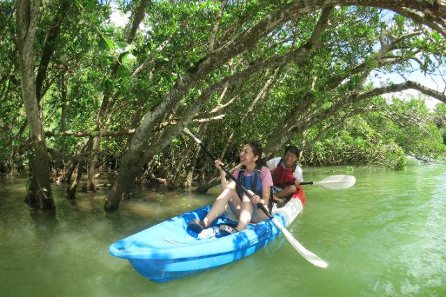 【沖縄・中部・カヤック】ジャングルに囲まれた川を探検!マングローブカヤック