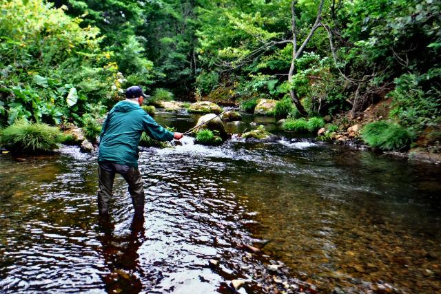 【北海道・釣り体験】ブナ北限の里に住む案内人同行!手ぶらで渓流or海釣り体験
