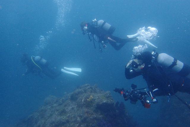 【和歌山・田辺市・体験ダイビング】2名までの少人数制!体験ボートダイビング