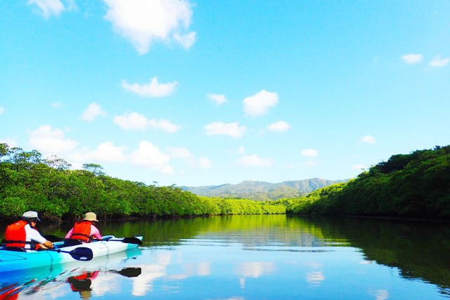 【沖縄・西表島・カヌー】西表島ならではの風景を楽しむ!マングローブカヌーツアー〈A-4C〉