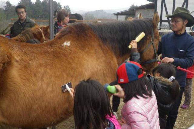 【岡山・乗馬体験】グループで楽しもう!団体向け・乗馬体験プラン(10名以上)