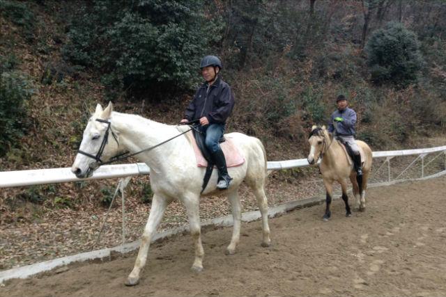 【岡山・乗馬体験】乗馬のライセンスを取ろう!乗馬5級ライセンス取得コース(全9回)