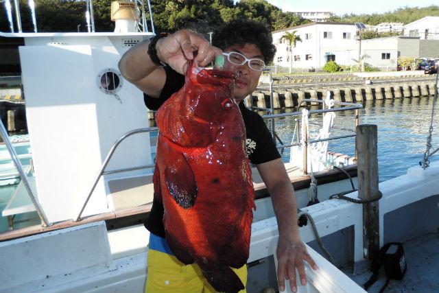 【小笠原・ケータ島・海釣り体験】釣り人のパラダイス!聟島列島(ケータ島)遠征コース