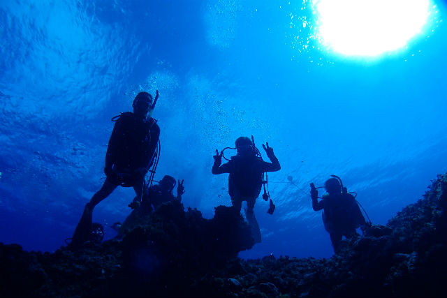 【静岡市・体験ダイビング】伊豆半島で潜ろう!体験ダイビング(1日)
