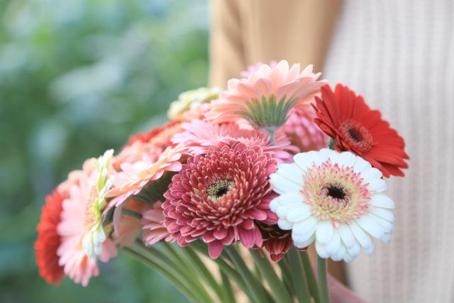 【北海道・花摘み体験】女性のアグリツーリズムに!生花摘み体験&花束づくりプラン