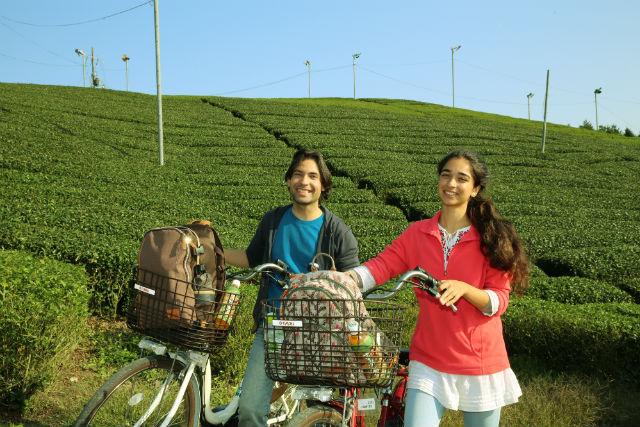 【京都市・サイクリング】日本緑茶発祥の地を訪ねて。宇治茶畑サイクリング