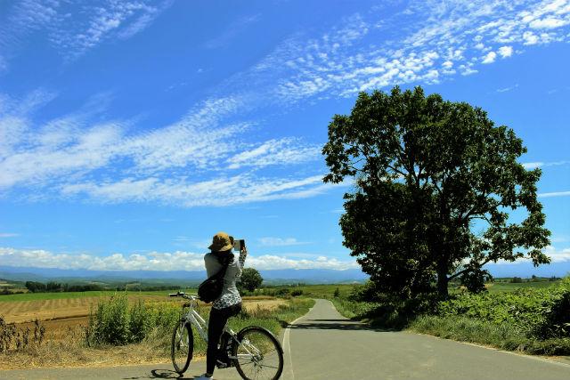 【北海道・美瑛・サイクリング】美瑛の丘をサイクリング!1日ツアー(電動アシスト自転車)