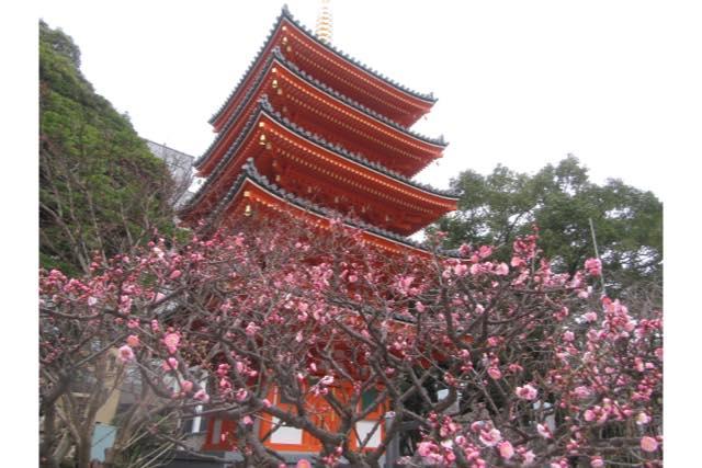 【福岡・博多・ガイドツアー】日宋貿易で栄えた