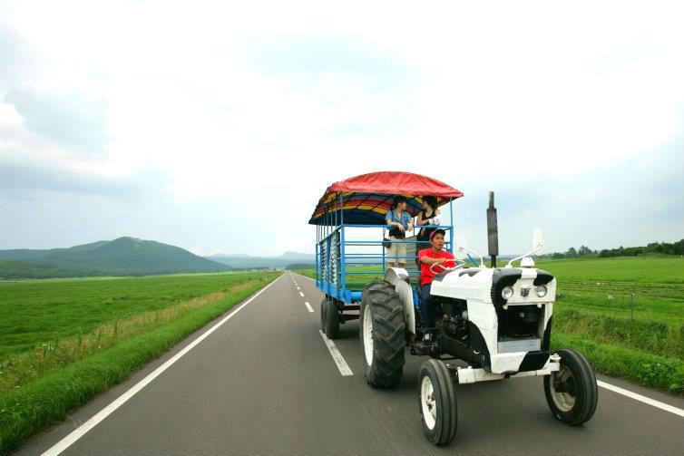 【北海道・弟子屈町】乳搾り体験&トラクターで大草原を周遊・牧場体験(40分)