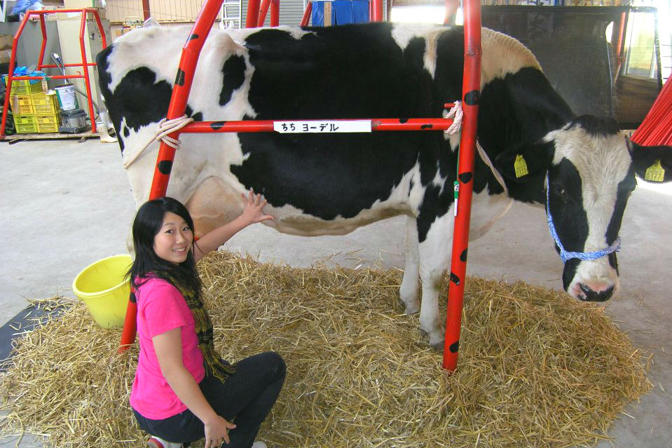 【北海道・弟子屈町】乳搾り・バター・アイスクリーム作り・トラクター体験など。スペシャルコース(80分)