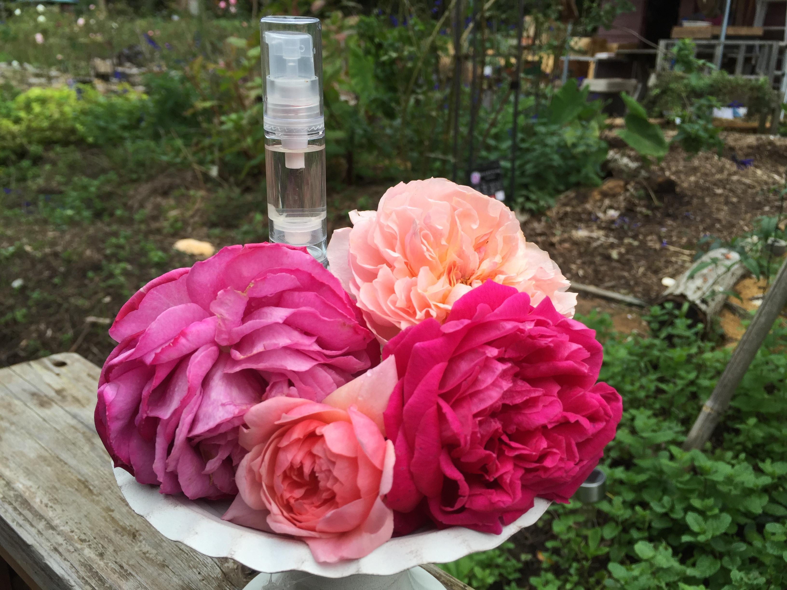 【千葉・館山】摘みたての季節の草花で香水作り( バラ・ラベンダー・ミントなど・ 3本・90分)