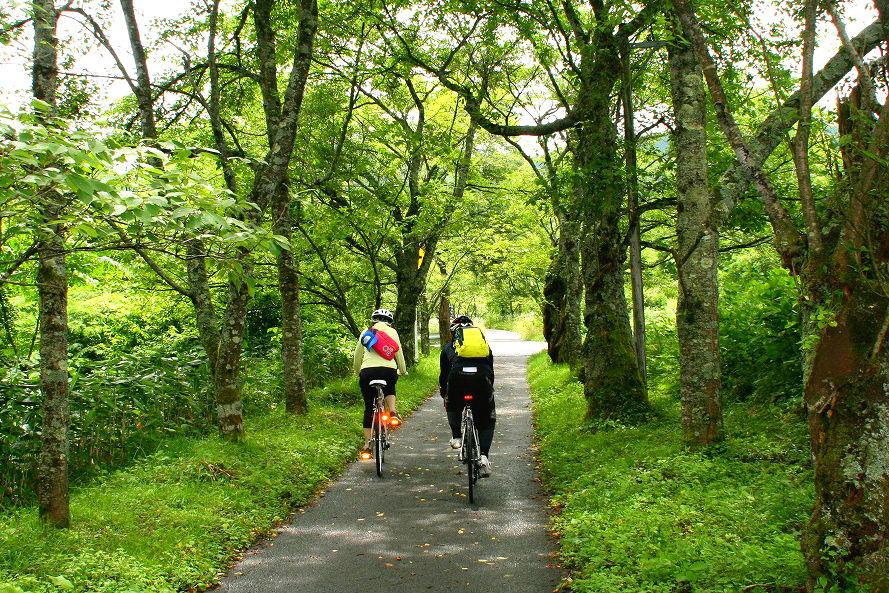 【岡山・蒜山】蒜山サイクリングツアー(4時間)