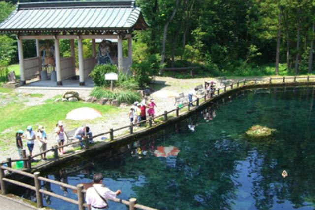 【栃木・鬼怒川・釣り体験】マスやイワナを釣り上げよう!大きな釣り堀で体験