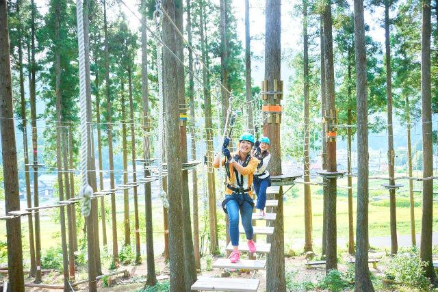 【福井・アスレチック】樹の上のアスレチックで遊ぼう!ディスカバリーコース(アドベンチャーゾーン&ピクニックゾーン)