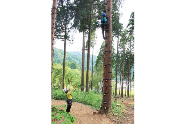 【福井・木登り】木登りやジャイアントスイングを体験!ツリークライムコース