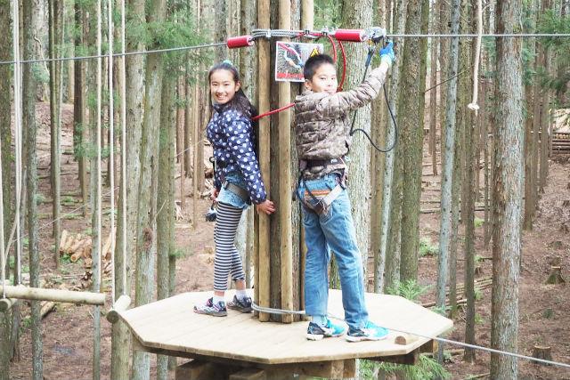 【神奈川・厚木市・アスレチック】樹上15mの冒険!ツリークロスアドベンチャー(ジップライン付)