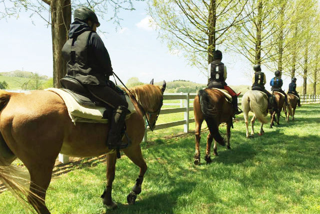 【栃木・那須・乗馬体験】じっくり乗馬してみたい!グランドプレーリーコース(約100分)