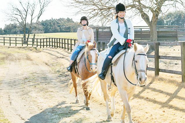 【栃木・那須・乗馬体験】一対一で乗馬を学べる!マンツーマンレッスン(約45分)