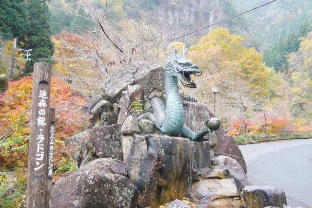 【広島・森林セラピー】1番やさしいコースです。龍頭峡セラピーロード