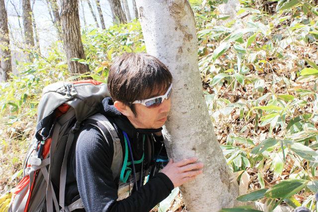【広島・森林セラピー】二段の滝に感動!三段峡二段滝・セラピーロード