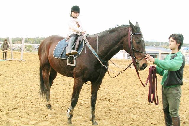 【福岡・乗馬体験】まずは乗ってみよう!初めての乗馬体験