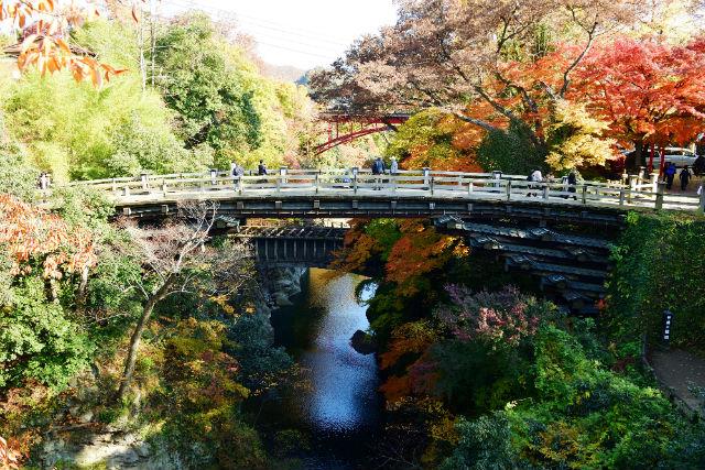 【山梨・観光船】浮世絵の世界を見に行こう!猿橋満喫コース