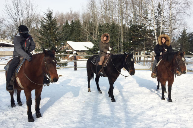【北海道・旭川・乗馬体験】白銀の乗馬トレッキングツアー(ランチ付)