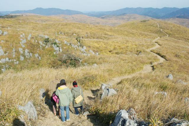 【山口・秋吉台・トレッキング】歩きごたえ充分の6km・3時間!秋吉台のてっぺんでお茶するっちゃ!