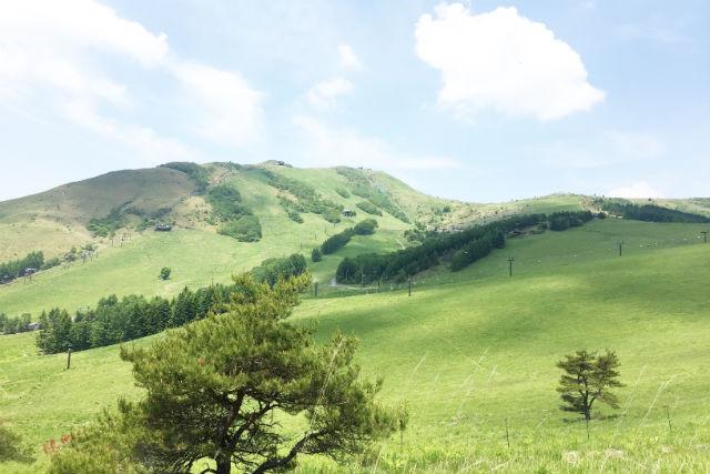 【長野・茅野市・トレッキング】日本百名山に登ろう!車山・霧ヶ峰散策ツアー