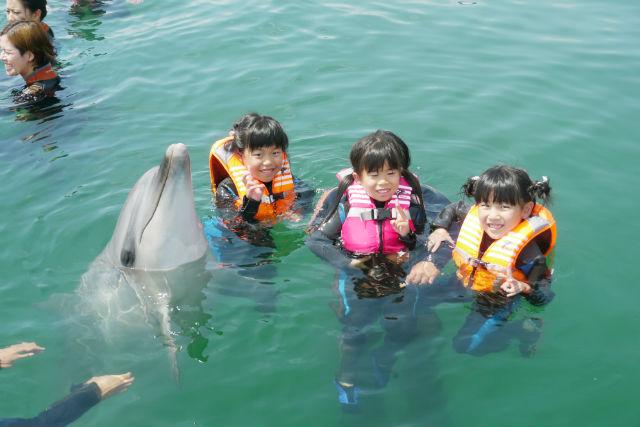 【香川・イルカツアー】入場料込み!イルカと泳ぐ夢の体験!ドルフィンスイム