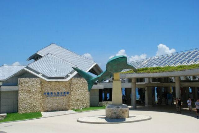 【沖縄・北部・シーサー作り】沖縄の観光名所も巡れる!沖縄の守り神シーサー作り体験