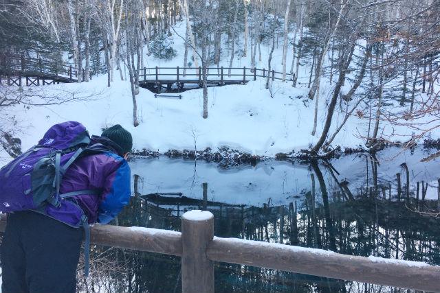 【北海道・知床・スノーシュー】知床の森、神の子池へ!スノーシューツアー