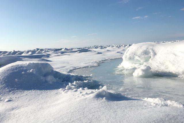【北海道・知床・流氷ウォッチング】オホーツク海の流氷ウォッチング!オンザロック付き