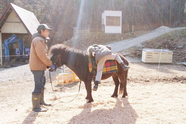 【宮城・仙台・乗馬体験】コース内容を自由に組める!プライベートレッスン乗馬体験