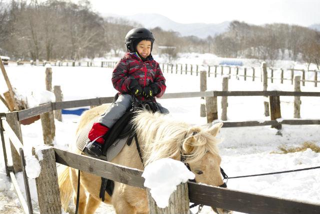 【北海道・牧場体験】駒ヶ岳を望む大自然の中で、1泊2日の牧場暮らし体験!