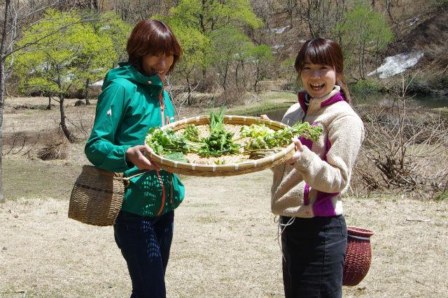 【長野・ハイキング】知識豊富なガイドと行こう!山菜狩り里山ハイキング