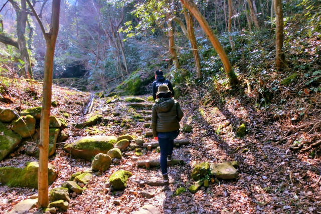 【大分・中津・ハイキング】中津のシンボル「八面山」を登るハイキングツアー