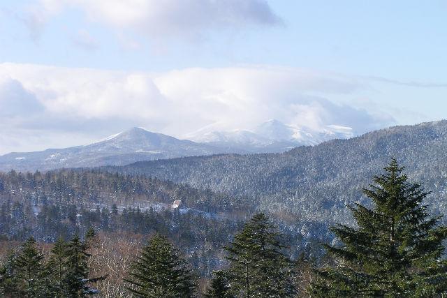 【北海道・阿寒湖・ウォーキング】清々しい森に癒される!早朝ドライブ&散歩