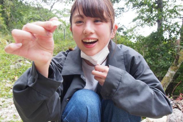 【岩手・陸前高田・トレッキング】玉山金山黄金探訪(ガイド付き)